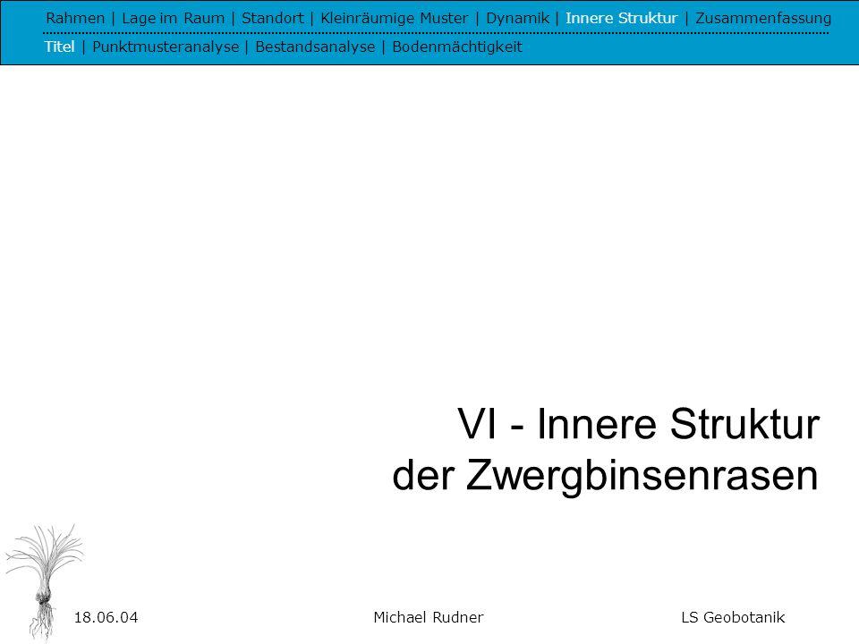 18.06.04Michael RudnerLS Geobotanik Ripleys K Rahmen | Lage im Raum | Standort | Kleinräumige Muster | Dynamik | Innere Struktur | Zusammenfassung Titel | Punktmusteranalyse | Bestandsanalyse | Bodenmächtigkeit