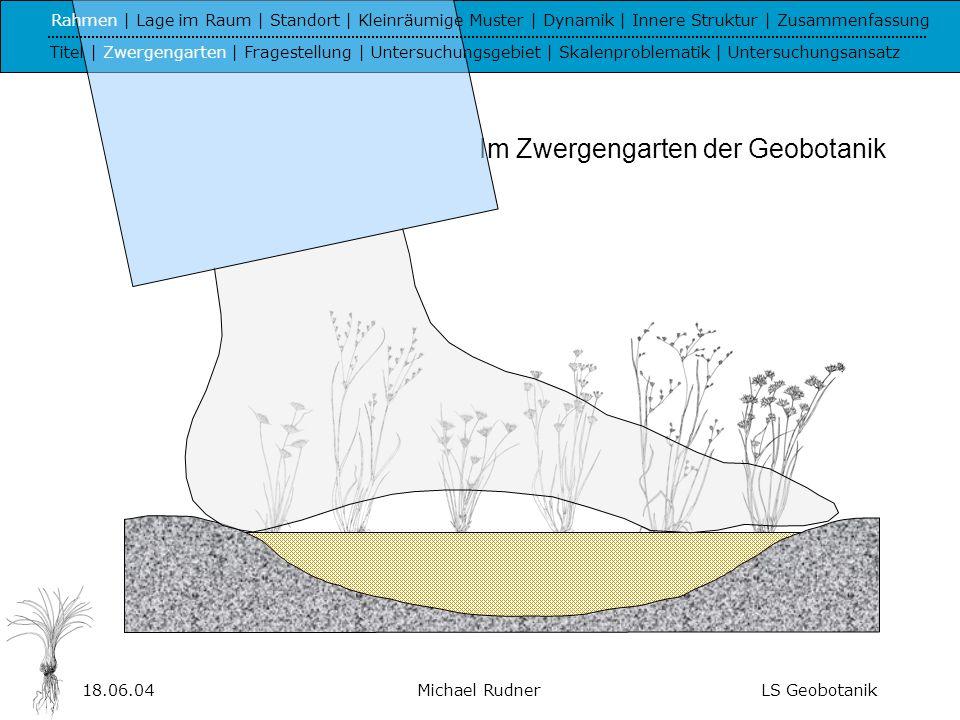 18.06.04Michael RudnerLS Geobotanik Welche Standortbedingungen und Prozesse sind für das Auftreten und die Dynamik von Zwergbinsenrasen in west- mediterranen Korkeichenwaldlandschaften verantwortlich.