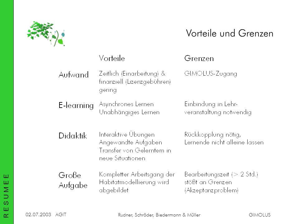 02.07.2003AGIT Rudner, Schröder, Biedermann & MüllerGIMOLUS Vorteile und Grenzen R E S U M E E