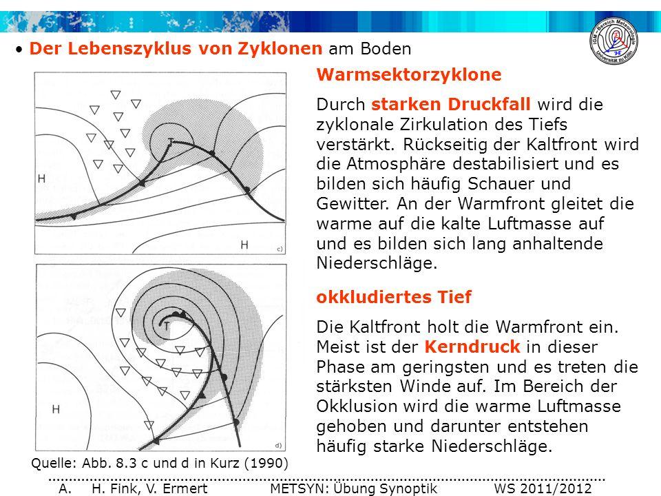 A. H. Fink, V. Ermert METSYN: Übung Synoptik WS 2011/2012 Der Lebenszyklus von Zyklonen am Boden Warmsektorzyklone Durch starken Druckfall wird die zy