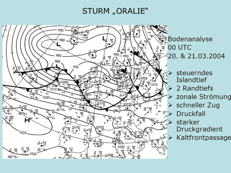 STURM ORALIE Bodenanalyse 00 UTC 20. & 21.03.2004 steuerndes Islandtief 2 Randtiefs zonale Strömung schneller Zug Druckfall starker Druckgradient Kalt