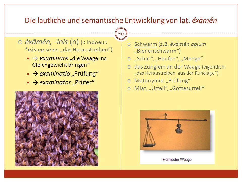 50 Die lautliche und semantische Entwicklung von lat. ĕxāmĕn ĕxāmĕn, -ĭnĭs (n) (< indoeur. *eks-ag-smen das Heraustreiben) examinare die Waage ins Gle