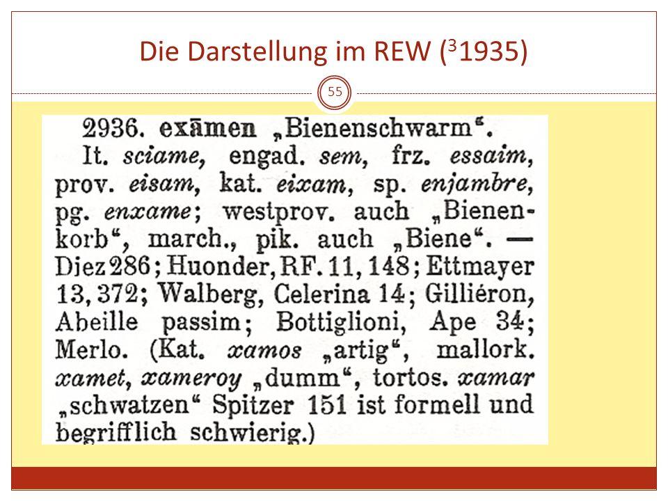 55 Die Darstellung im REW ( 3 1935)