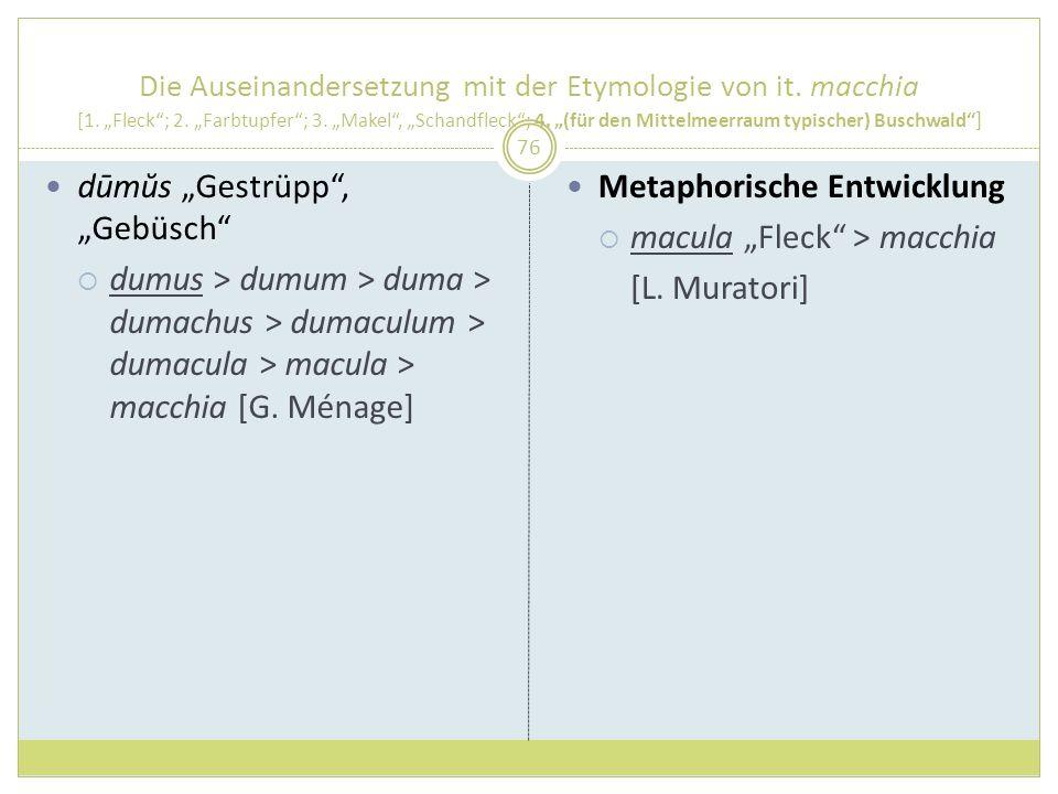 Die Auseinandersetzung mit der Etymologie von it. macchia [1. Fleck; 2. Farbtupfer; 3. Makel, Schandfleck; 4. (für den Mittelmeerraum typischer) Busch