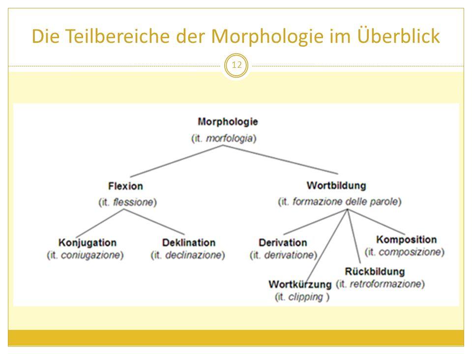 Die Teilbereiche der Morphologie im Überblick 12