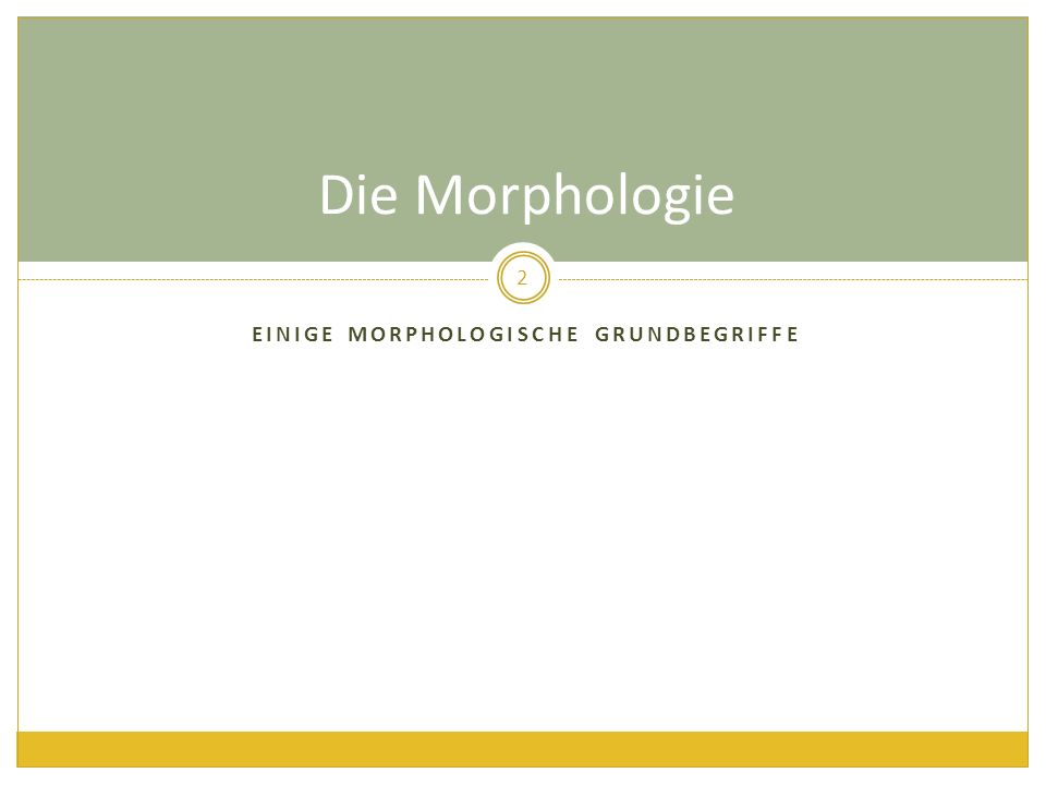 EINIGE MORPHOLOGISCHE GRUNDBEGRIFFE Die Morphologie 2