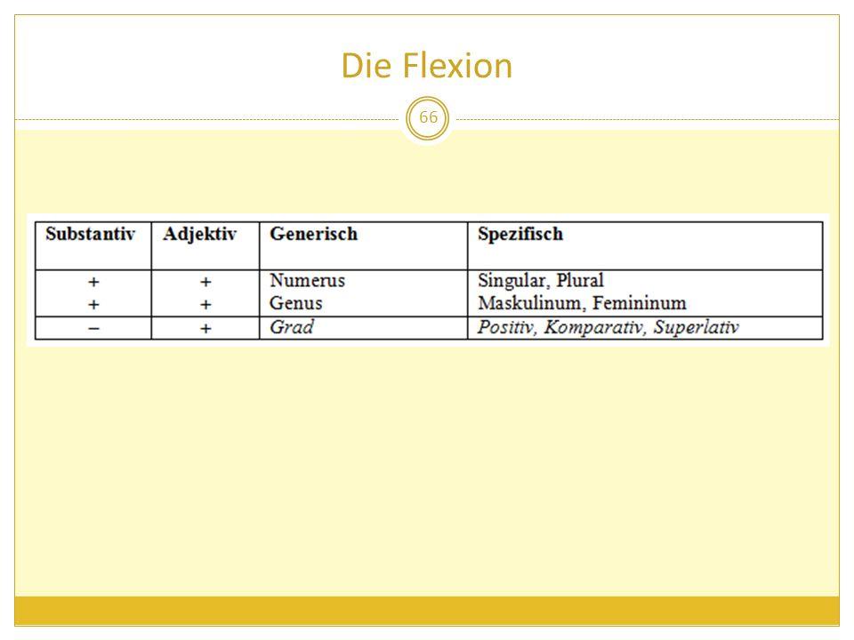 Die Flexion 66