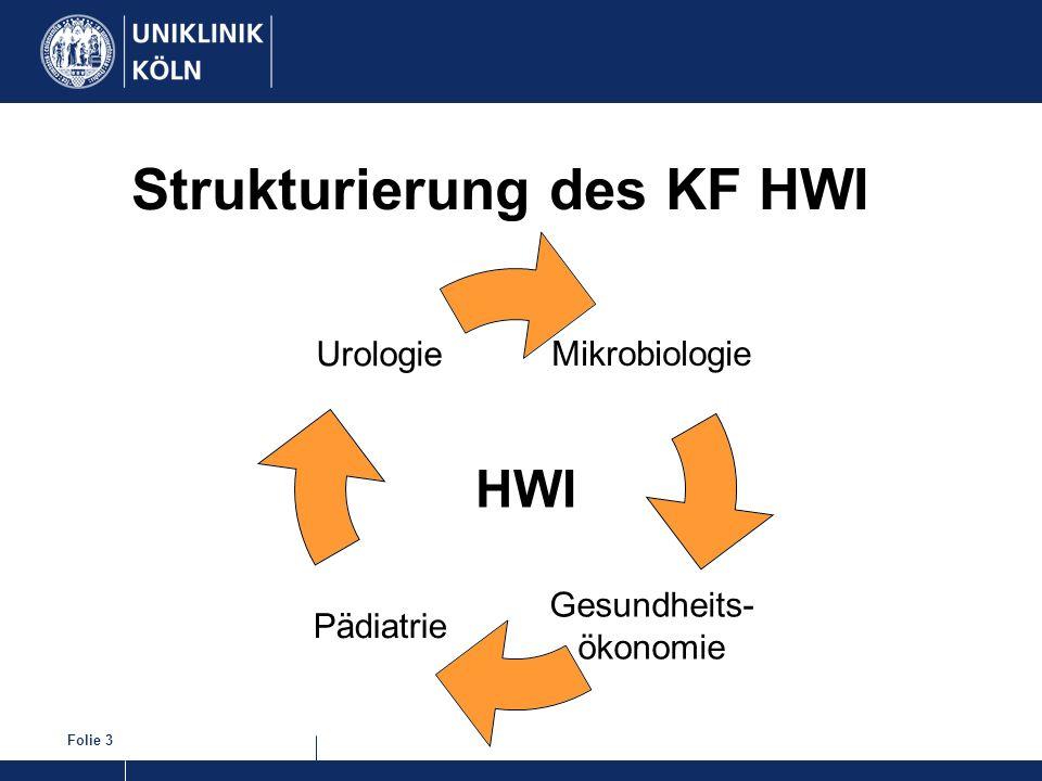 Folie 3 Strukturierung des KF HWI HWI