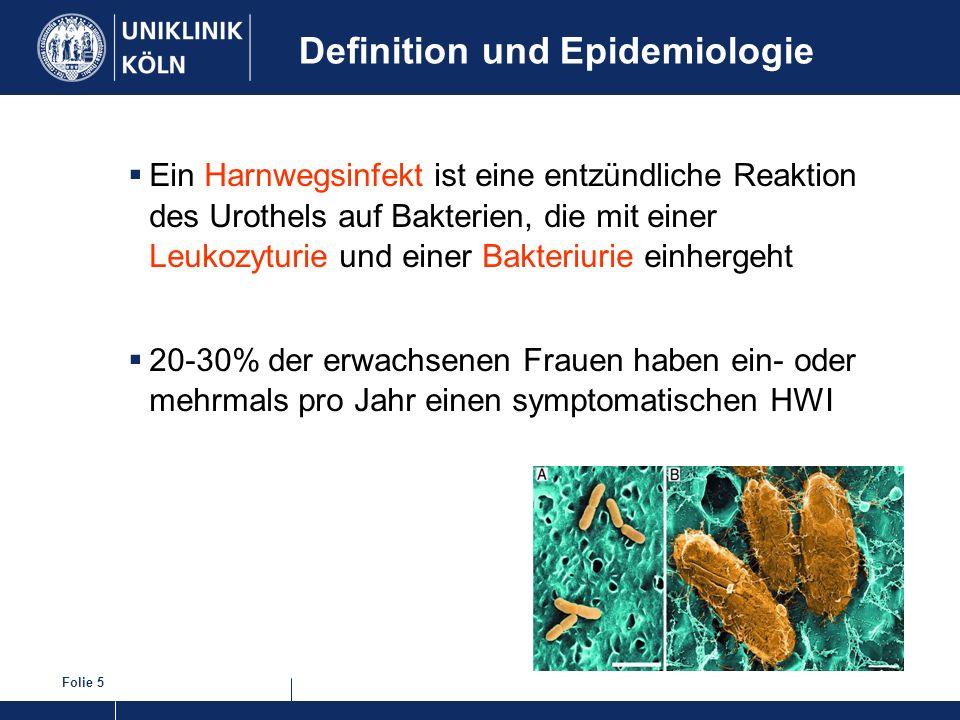 Folie 5 Definition und Epidemiologie Ein Harnwegsinfekt ist eine entzündliche Reaktion des Urothels auf Bakterien, die mit einer Leukozyturie und eine