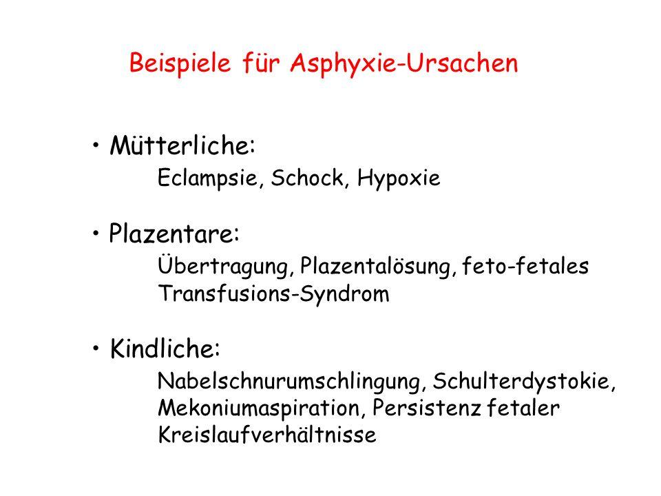 Beispiele für Asphyxie-Ursachen Mütterliche: Eclampsie, Schock, Hypoxie Plazentare: Übertragung, Plazentalösung, feto-fetales Transfusions-Syndrom Kin