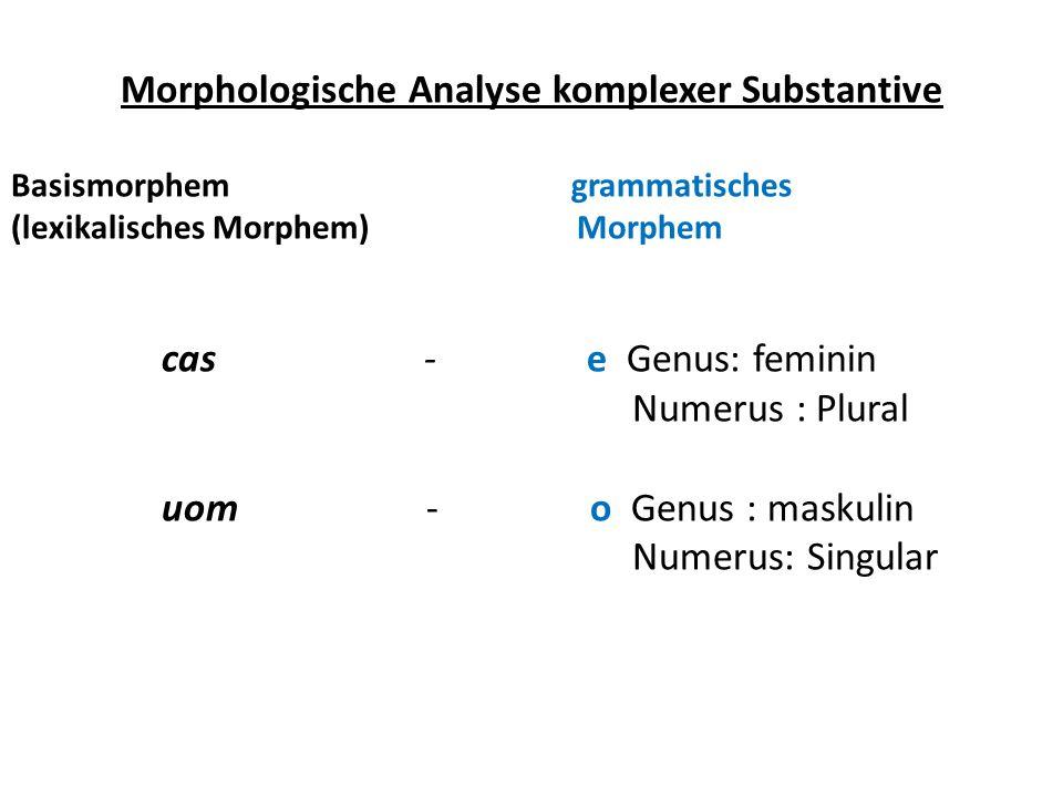 Morphologische Analyse komplexer Substantive Basismorphem grammatisches (lexikalisches Morphem) Morphem cas - e Genus: feminin Numerus : Plural uom -