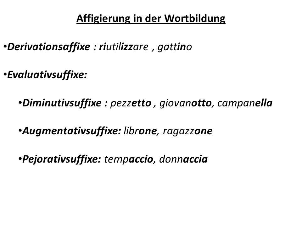Affigierung in der Wortbildung Derivationsaffixe : riutilizzare, gattino Evaluativsuffixe: Diminutivsuffixe : pezzetto, giovanotto, campanella Augment