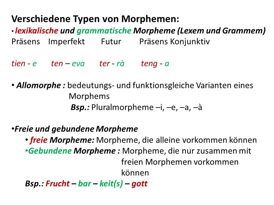 Verschiedene Typen von Morphemen: lexikalische und grammatische Morpheme (Lexem und Grammem) Präsens Imperfekt Futur Präsens Konjunktiv tien - e ten –
