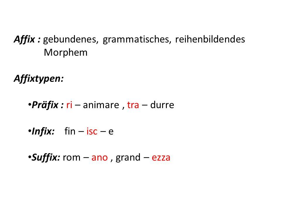 Affix : gebundenes, grammatisches, reihenbildendes Morphem Affixtypen: Präfix : ri – animare, tra – durre Infix: fin – isc – e Suffix: rom – ano, gran