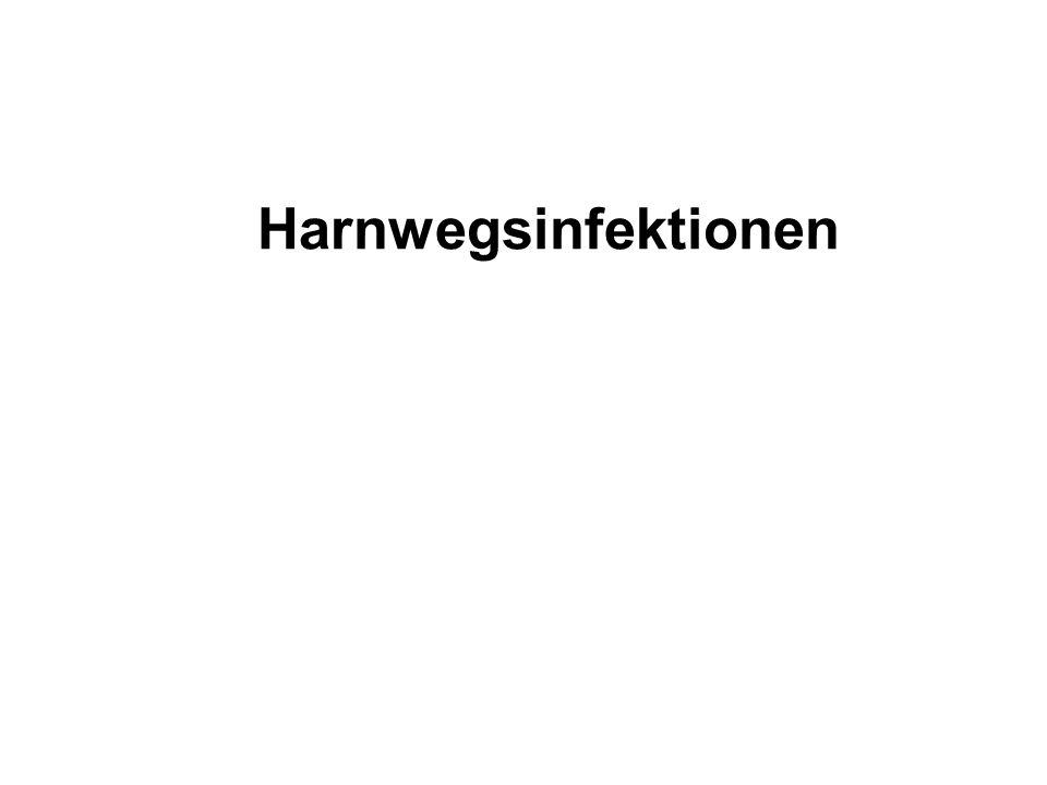 Eltern gut informieren Urinklebebeutel im gelben Vorsorgeheft Rasche Harndiagnostik bei Fieber Säugling mit akuter Pyelonephritis Sicherung der Diagnose innerhalb von 24 - (48) Stunden durch Blasenpunktion oder Katheterurin (Notfall wie Meningitis !) Leukozyturie + Bakteriurie im Blasenharn Maßnahmen zur Früherkennung einer Pyelonephritis