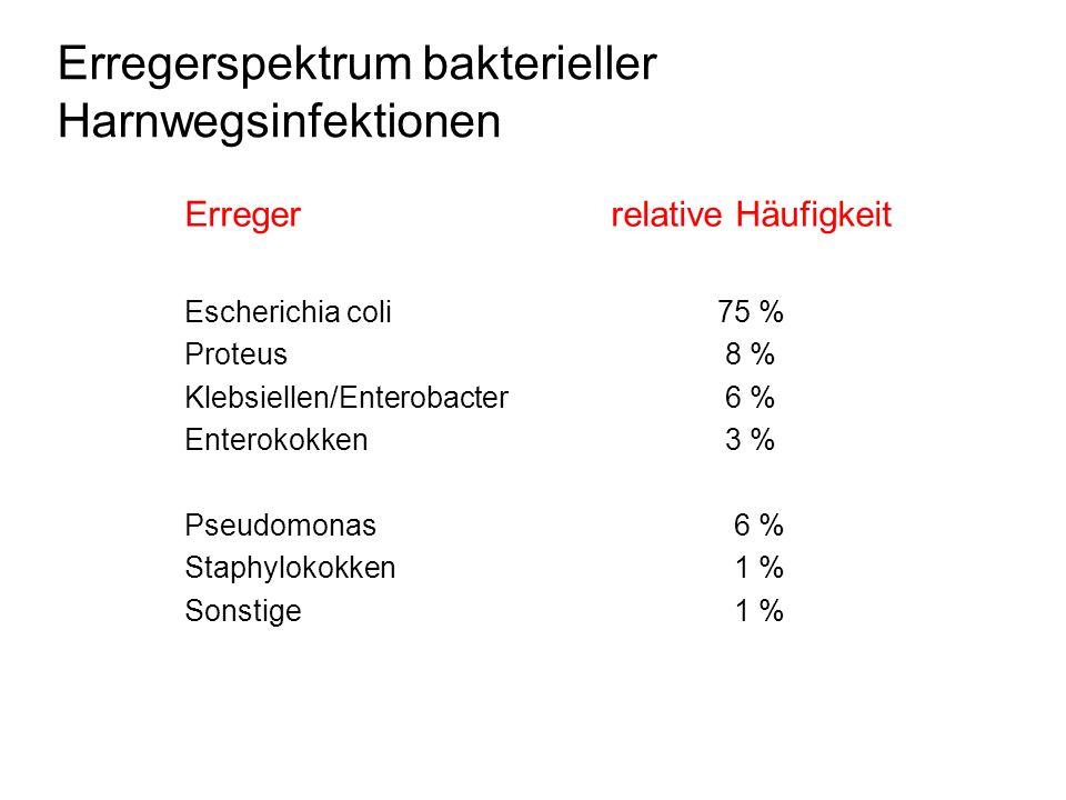 Erregerspektrum bakterieller Harnwegsinfektionen Erregerrelative Häufigkeit Escherichia coli75 % Proteus 8 % Klebsiellen/Enterobacter 6 % Enterokokken