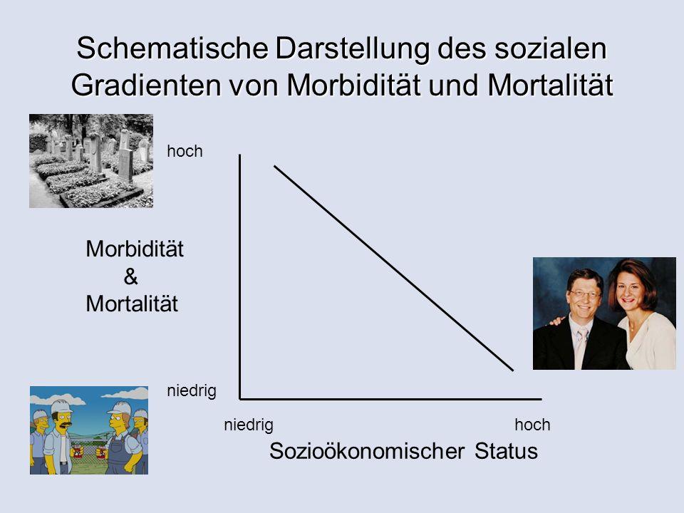 Schematische Darstellung des sozialen Gradienten von Morbidität und Mortalität niedrighoch niedrig hoch Morbidität & Mortalität Sozioökonomischer Status
