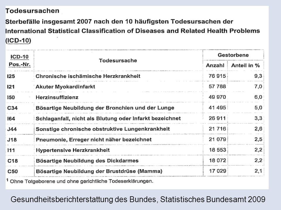 Gesundheitsberichterstattung des Bundes, Statistisches Bundesamt 2009