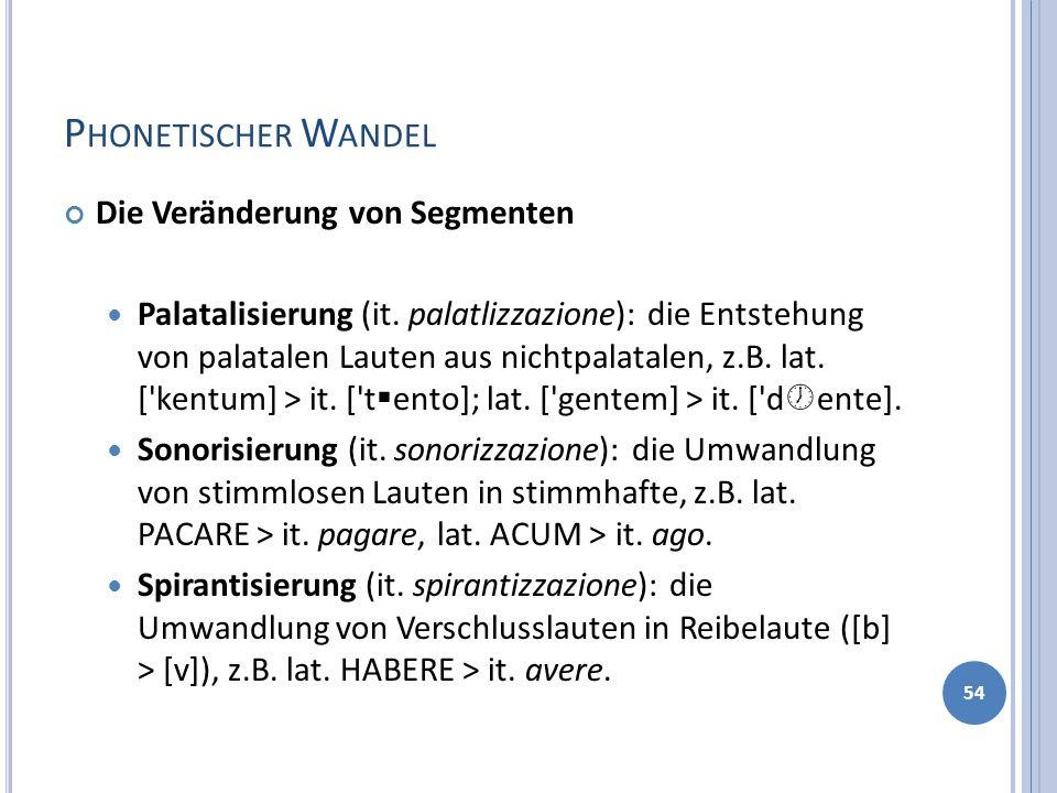 P HONETISCHER W ANDEL Die Veränderung von Segmenten Palatalisierung (it. palatlizzazione): die Entstehung von palatalen Lauten aus nichtpalatalen, z.B