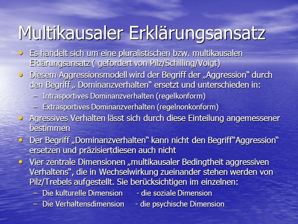 Multikausaler Erklärungsansatz Es handelt sich um eine pluralistischen bzw. multikausalen ERlärungsansatz ( gefordert von Pilz/Schilling/Voigt) Es han
