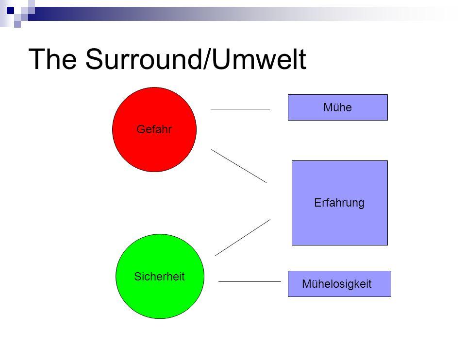 The Surround/Umwelt Gefahr Sicherheit Erfahrung Mühe Mühelosigkeit