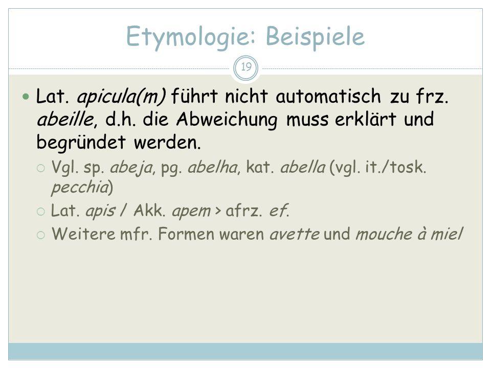 19 Etymologie: Beispiele Lat. apicula(m) führt nicht automatisch zu frz. abeille, d.h. die Abweichung muss erklärt und begründet werden. Vgl. sp. abej