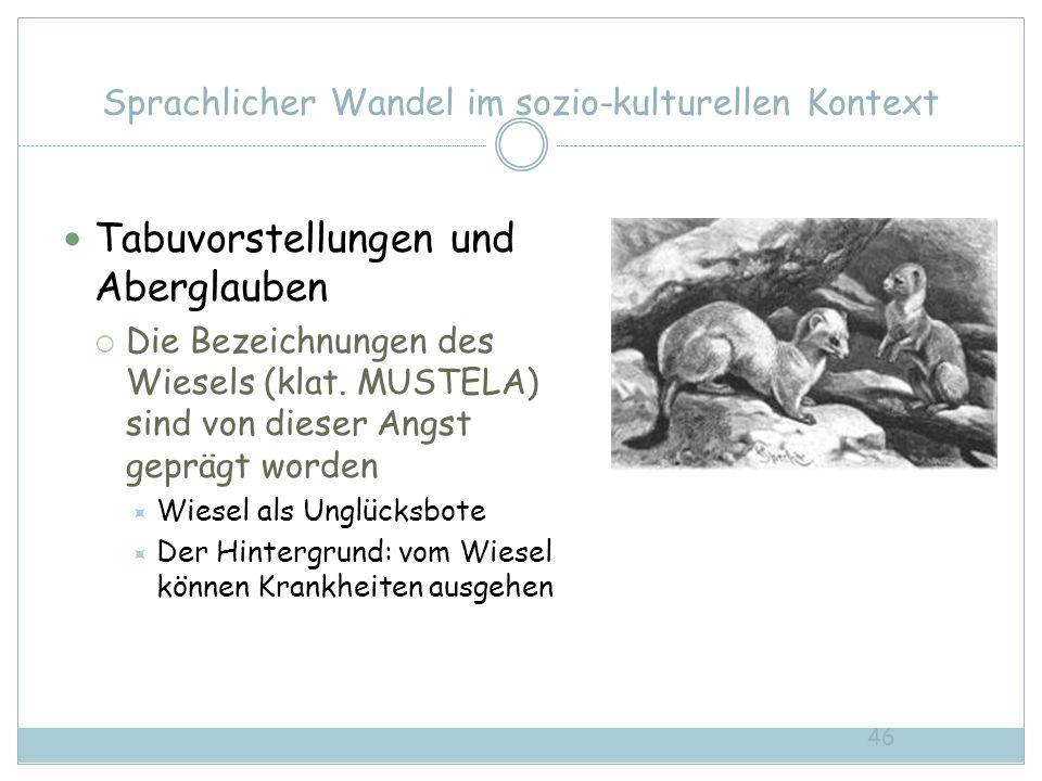 46 Sprachlicher Wandel im sozio-kulturellen Kontext Tabuvorstellungen und Aberglauben Die Bezeichnungen des Wiesels (klat. MUSTELA) sind von dieser An
