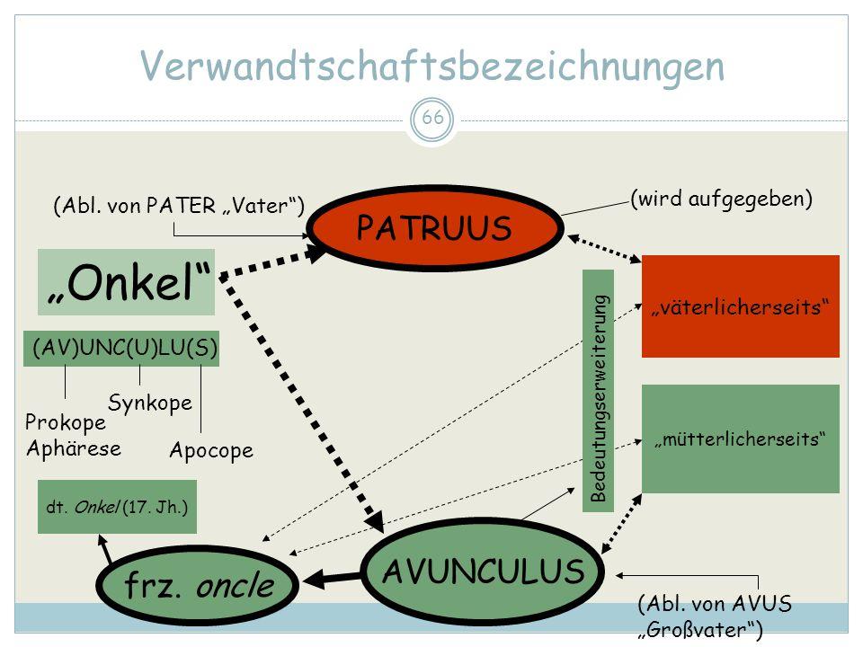 66 Verwandtschaftsbezeichnungen Onkel PATRUUS AVUNCULUS väterlicherseits mütterlicherseits frz. oncle (Abl. von PATER Vater) (Abl. von AVUS Großvater)