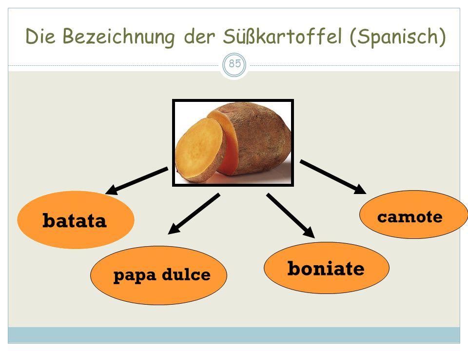Die Bezeichnung der Süßkartoffel (Spanisch) 85 batata camote papa dulce boniate