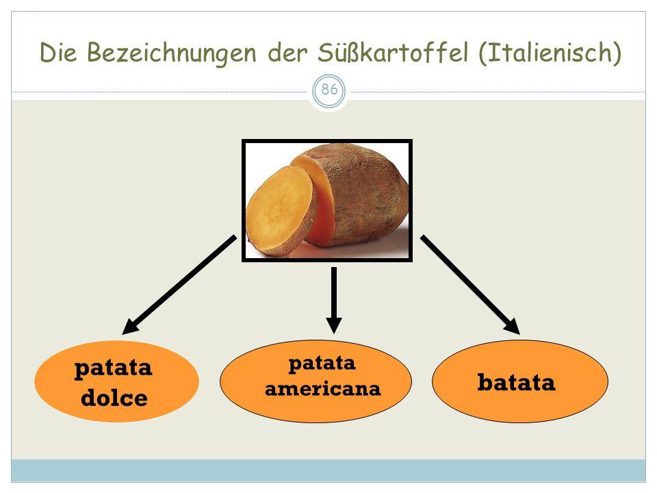 Die Bezeichnungen der Süßkartoffel (Italienisch) 86 patata dolce batata patata americana