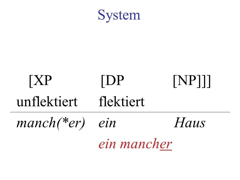 System [XP[DP[NP]]] unflektiertflektiert manch(*er) ein Haus ein mancher