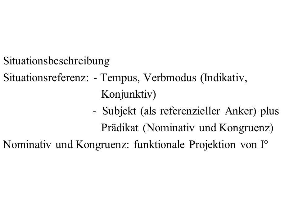 Situationsbeschreibung Situationsreferenz: - Tempus, Verbmodus (Indikativ, Konjunktiv) - Subjekt (als referenzieller Anker) plus Prädikat (Nominativ u