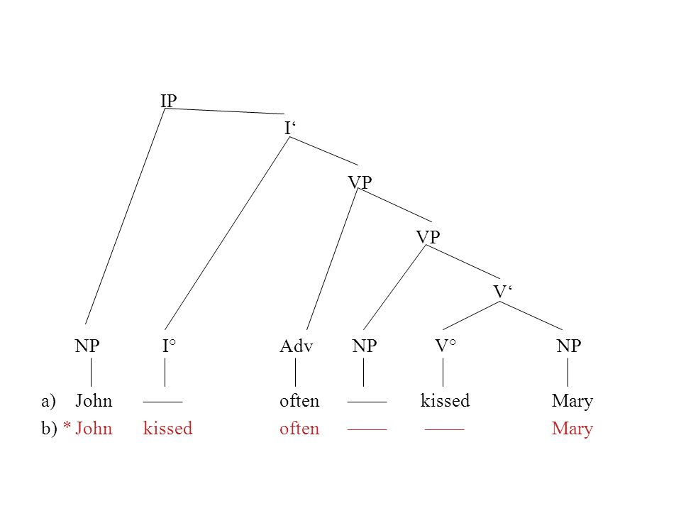 IP I VP V NP I° Adv NP V° NP a)John––––often–––– kissedMary b) *Johnkissedoften–––– ––––Mary c)Jean embrassesouvent–––– ––––Marie