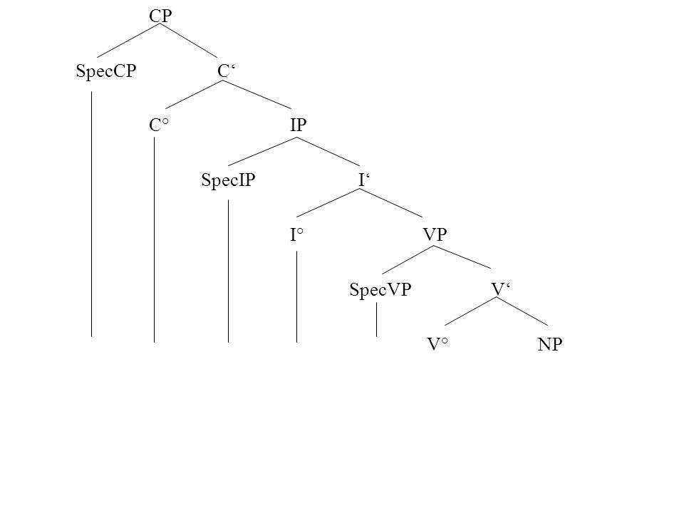 CP SpecCP C C° IP SpecIP I I° VP SpecVP V V° NP