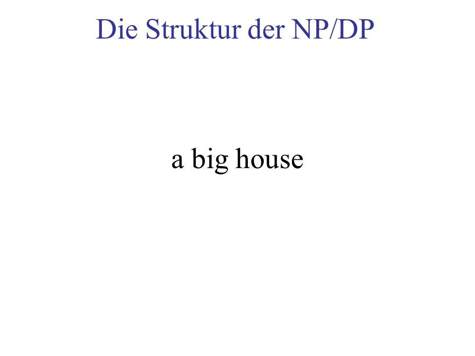 Die Struktur der NP/DP a big house