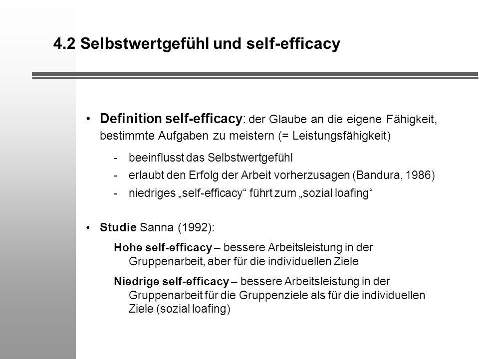 4.2 Selbstwertgefühl und self-efficacy Definition self-efficacy: der Glaube an die eigene Fähigkeit, bestimmte Aufgaben zu meistern (= Leistungsfähigk