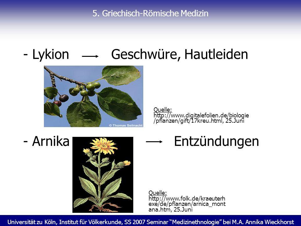 Universität zu Köln, Institut für Völkerkunde, SS 2007 Seminar Medizinethnologie bei M.A. Annika Wieckhorst 5. Griechisch-Römische Medizin - Lykion Ge