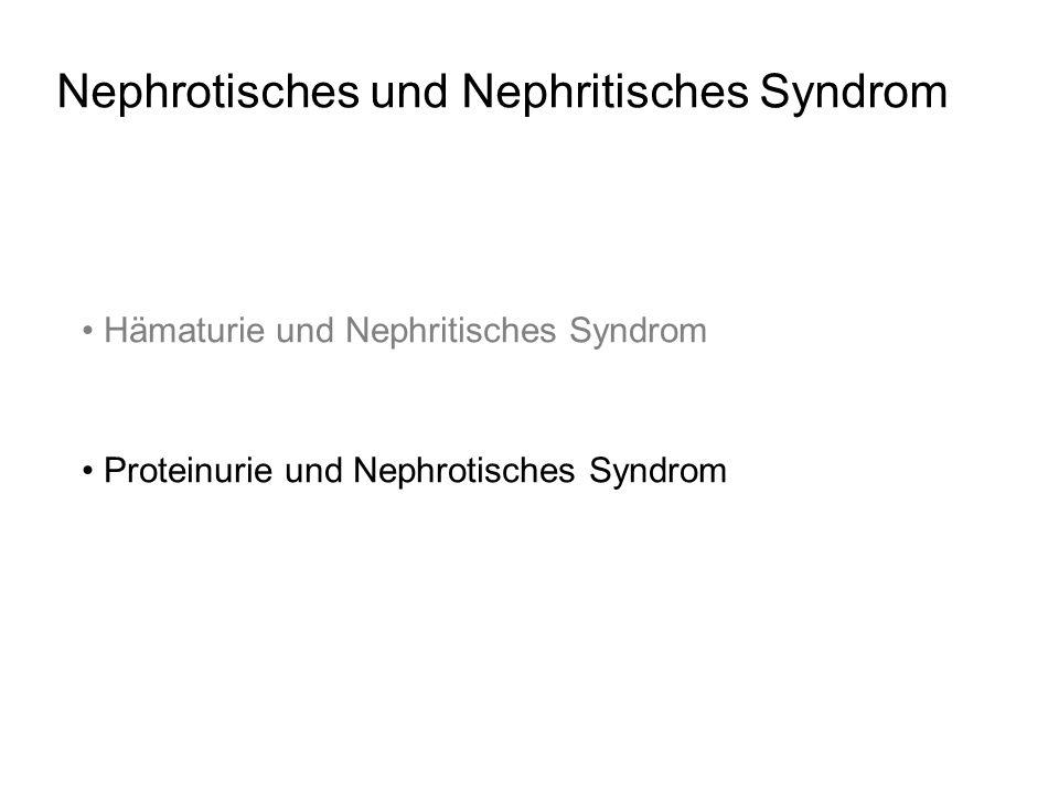 Nephrotisches und Nephritisches Syndrom Hämaturie und Nephritisches Syndrom Proteinurie und Nephrotisches Syndrom