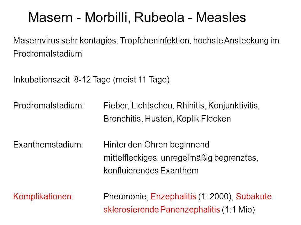 Varizellen - Windpocken, Chickenpox Virusinfektion mit sehr infektiösem vesikulären Exanthem.