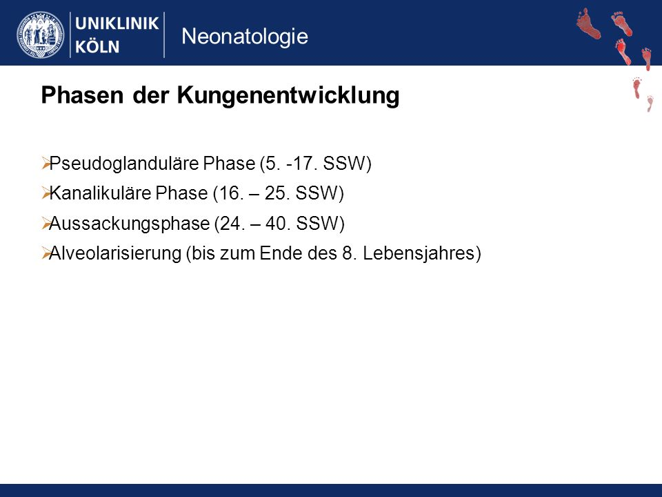 Neonatologie Surfactantsystem