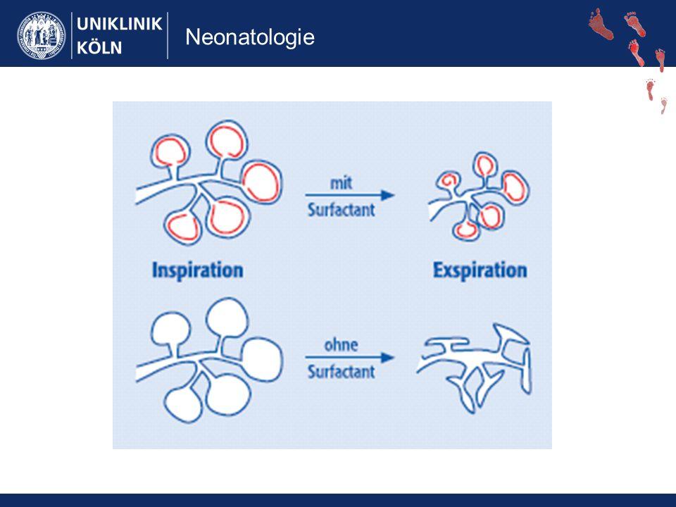 Neonatologie ZNS- Störungen Intraventriculäre Bluungen (IVH) Periventriculäre Leukomalazie Krampfanfälle