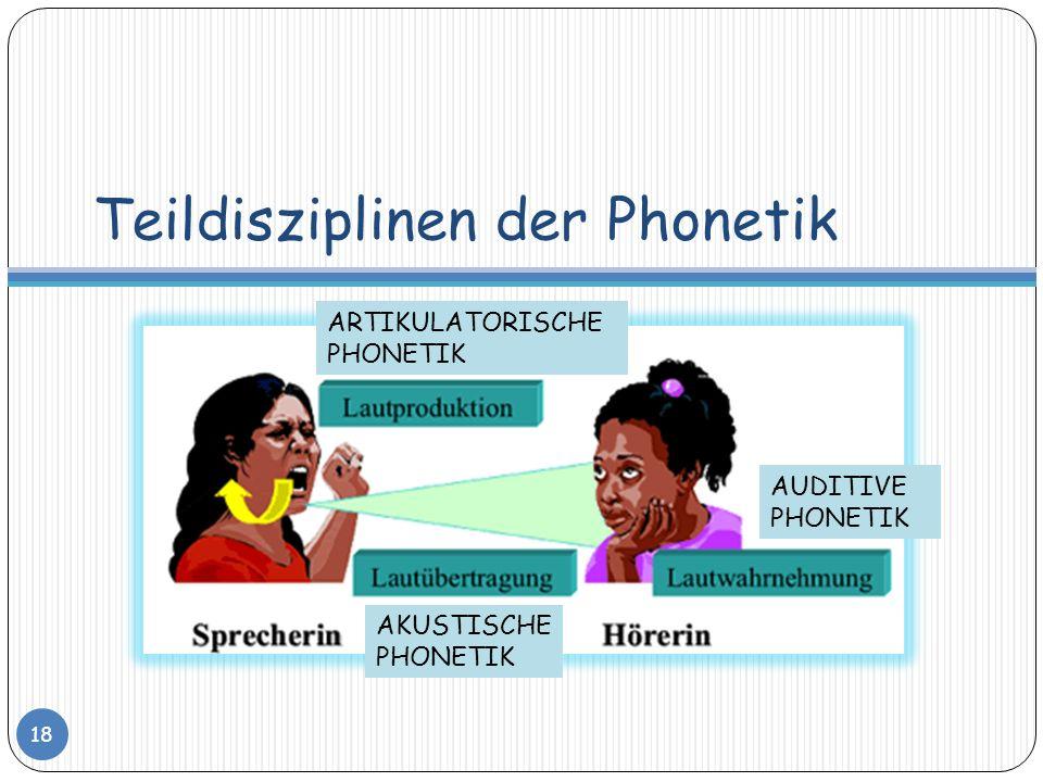 Teildisziplinen der Phonetik 18 ARTIKULATORISCHE PHONETIK AKUSTISCHE PHONETIK AUDITIVE PHONETIK
