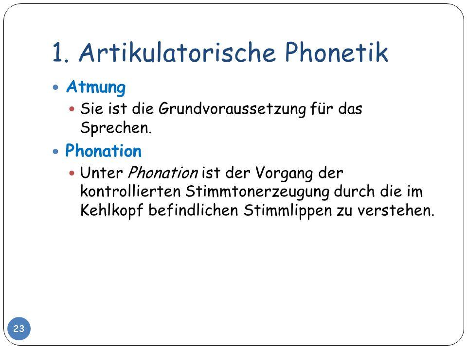1. Artikulatorische Phonetik Atmung Sie ist die Grundvoraussetzung für das Sprechen. Phonation Unter Phonation ist der Vorgang der kontrollierten Stim