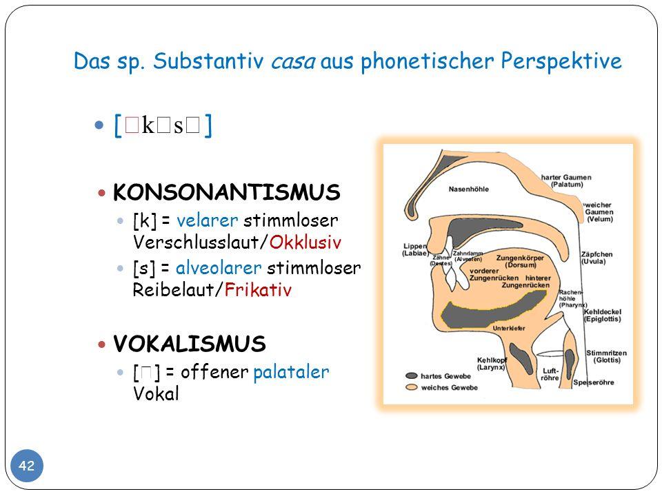Das sp. Substantiv casa aus phonetischer Perspektive 42 [ k s ] KONSONANTISMUS [k] = velarer stimmloser Verschlusslaut/Okklusiv [s] = alveolarer stimm
