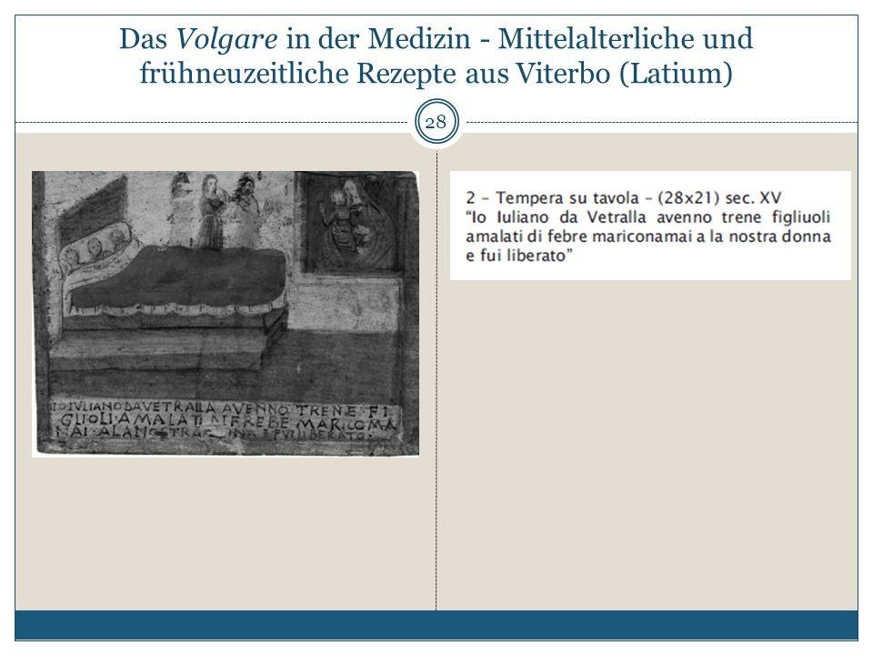 Das Volgare in der Medizin - Mittelalterliche und frühneuzeitliche Rezepte aus Viterbo (Latium) 28