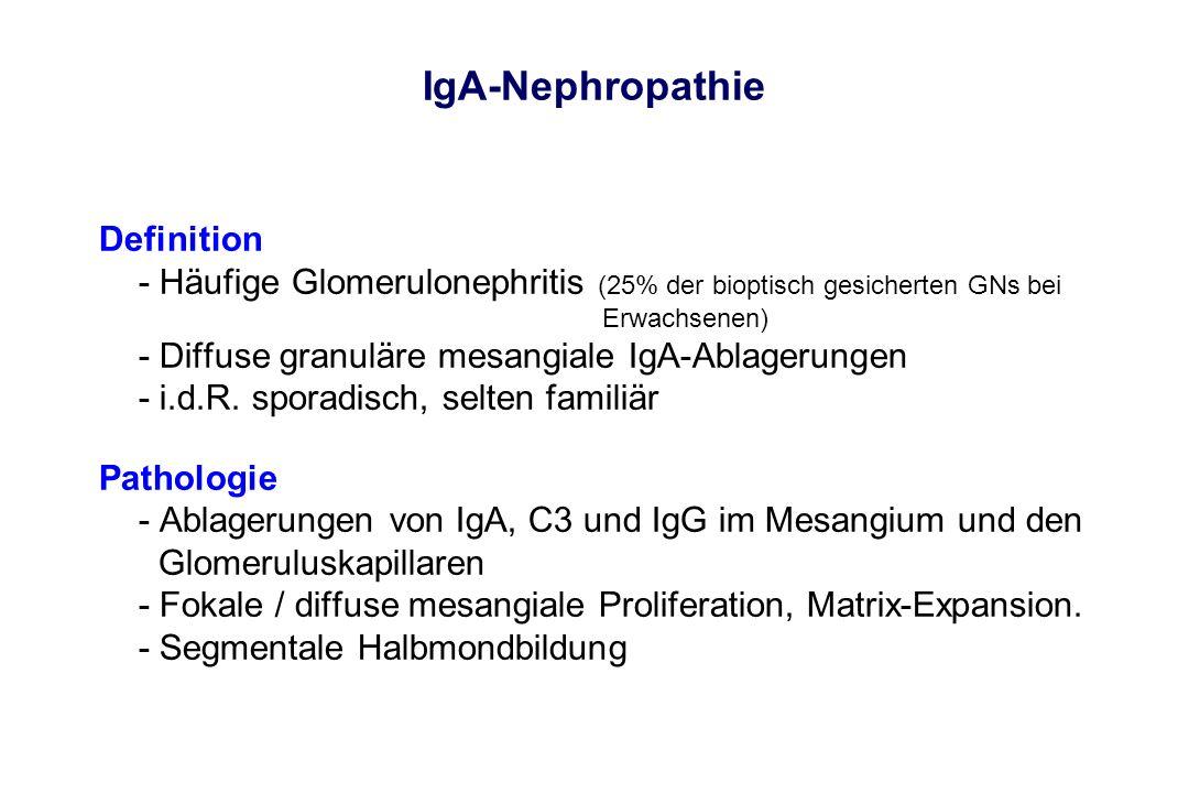 IgA-Nephropathie Definition - Häufige Glomerulonephritis (25% der bioptisch gesicherten GNs bei Erwachsenen) - Diffuse granuläre mesangiale IgA-Ablage