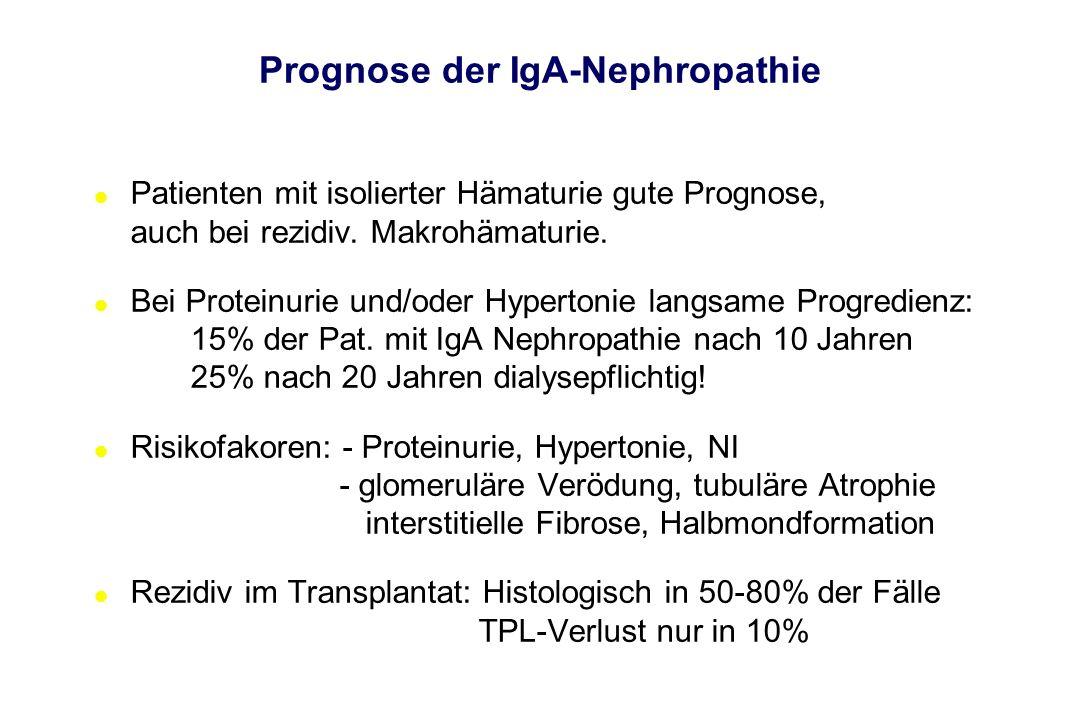 Prognose der IgA-Nephropathie l Patienten mit isolierter Hämaturie gute Prognose, auch bei rezidiv. Makrohämaturie. l Bei Proteinurie und/oder Hyperto