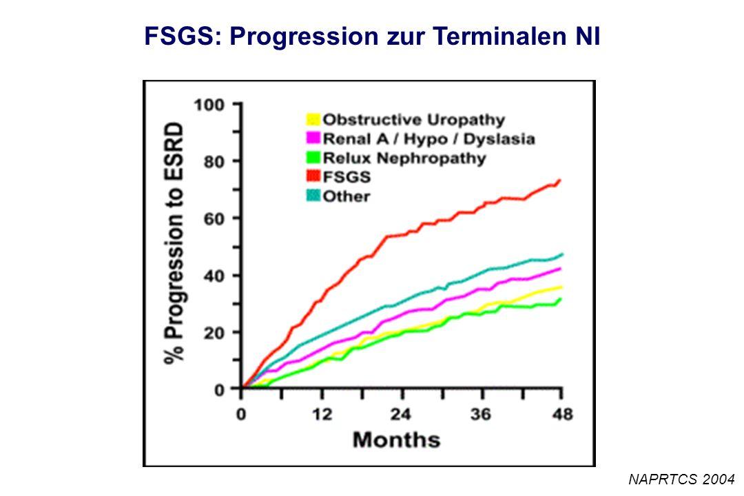 FSGS: Progression zur Terminalen NI NAPRTCS 2004