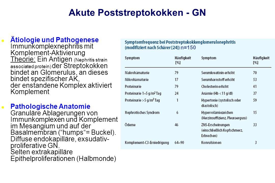 Akute Poststreptokokken - GN l Ätiologie und Pathogenese Immunkomplexnephritis mit Komplement-Aktivierung Theorie: Ein Antigen (Nephritis strain assoc
