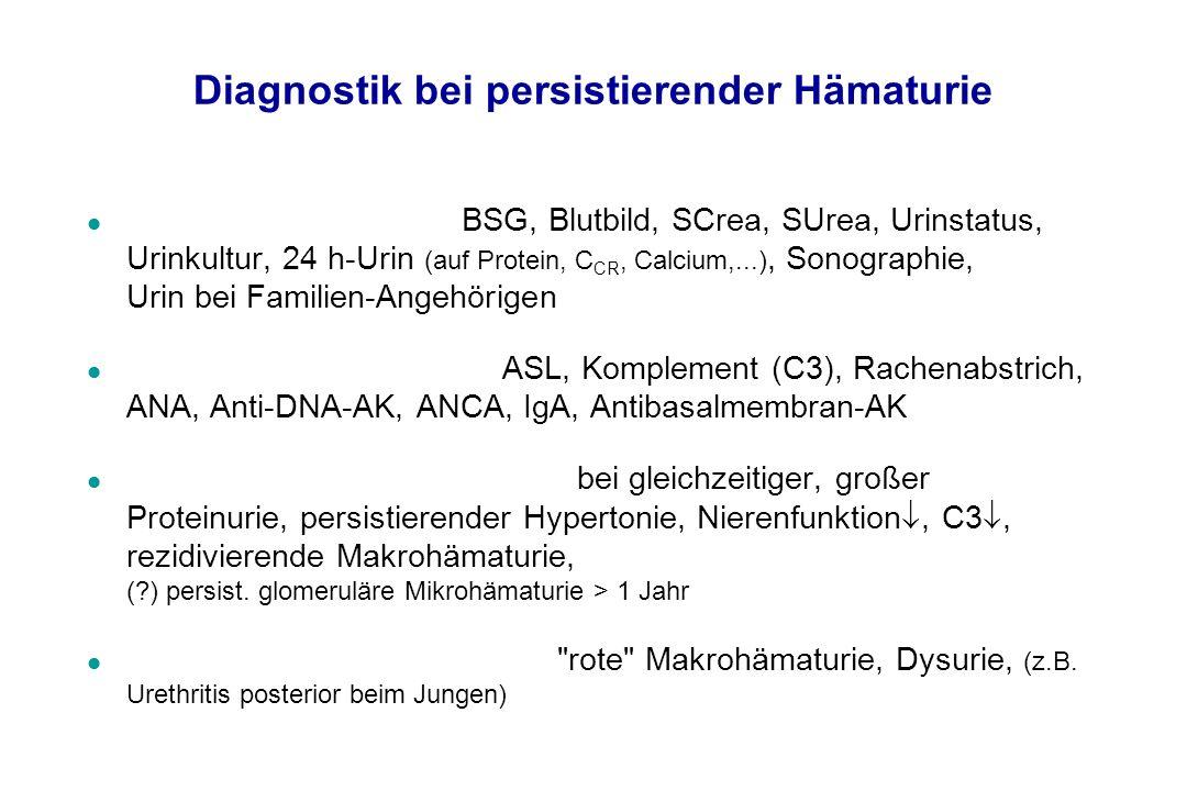 Diagnostik bei persistierender Hämaturie l Standard-Diagnostik: BSG, Blutbild, SCrea, SUrea, Urinstatus, Urinkultur, 24 h-Urin (auf Protein, C CR, Cal